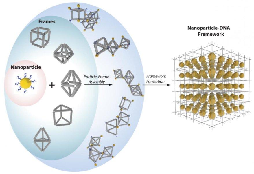 dna nanostructures