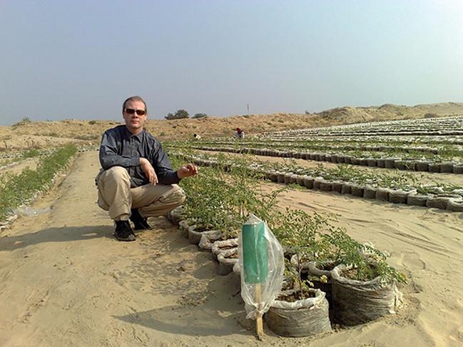 incentive prize deserts into farms
