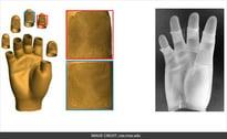 real 3d hands