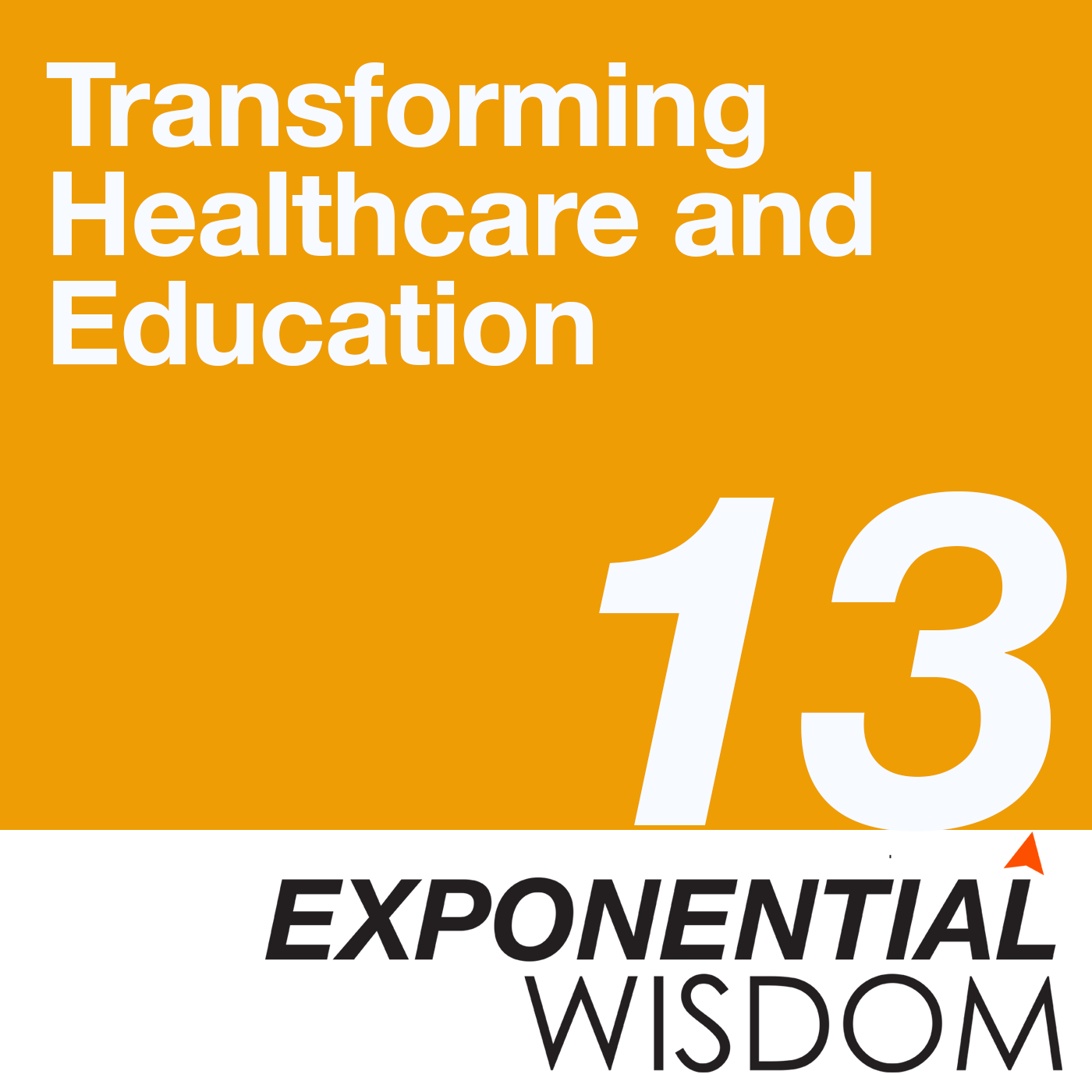 Episode 13: Transforming Healthcare and Education