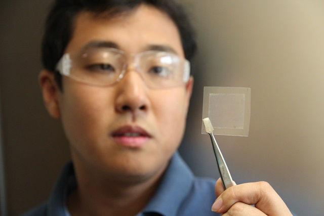 soybean graphene