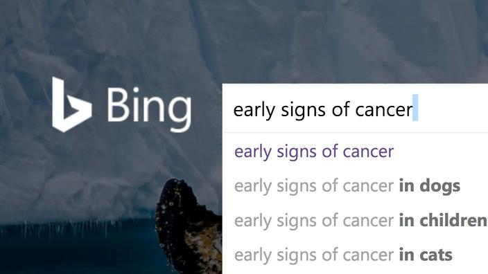 Pancreatic Cancer Search Engines