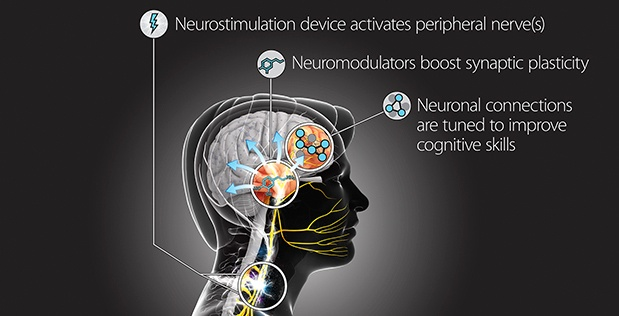Targeted Neuroplasticity Training
