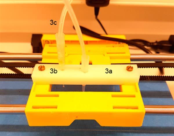 3d printed bacteria graphene