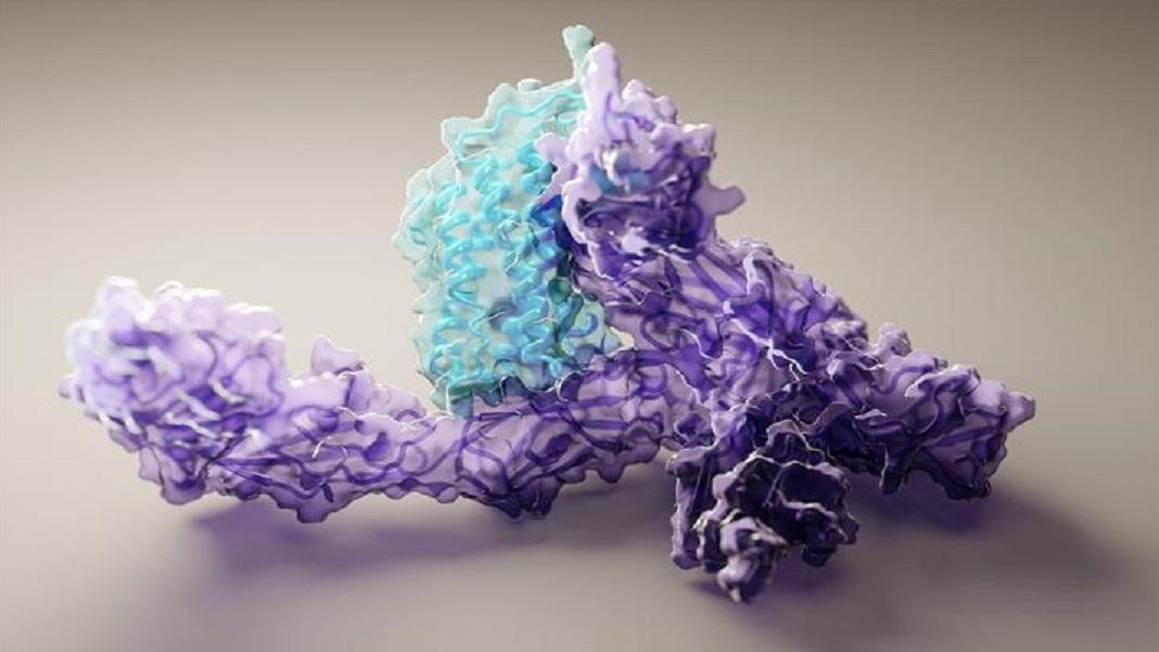 Protein folding AI