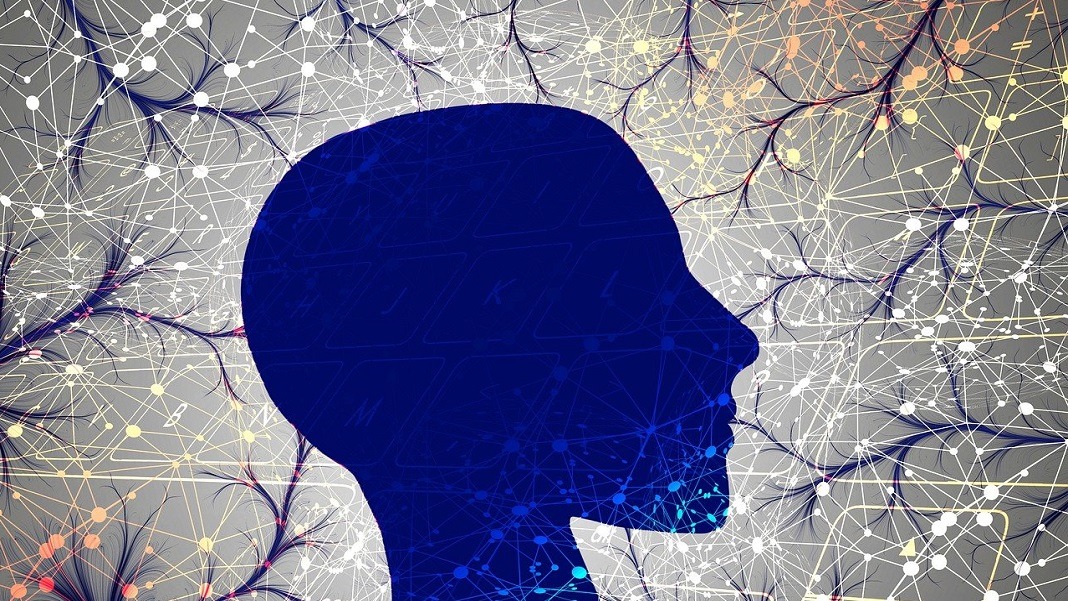 consciousness-conscious-forces-brain-neuroscience
